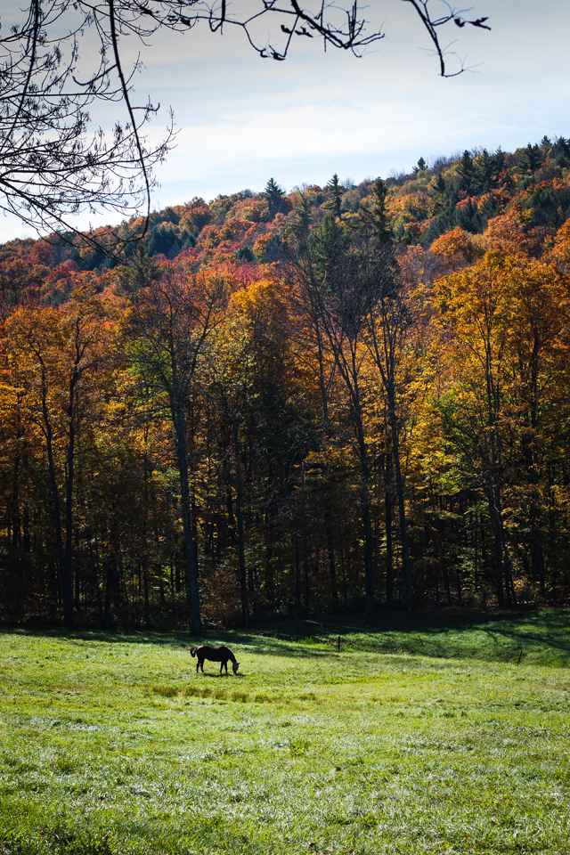 Visit Vermont | A trip to Woodstock, Vermont