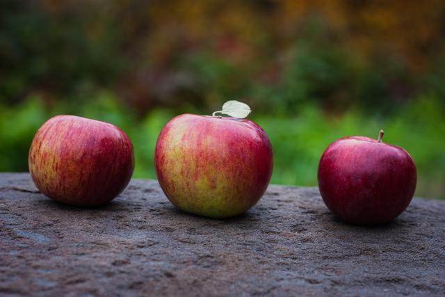 Apples   Vermont