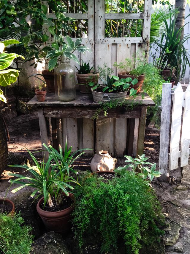 Best Spots in Tulum on christelleisflabbergasting.com